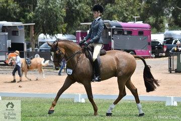 Supreme Champion Intermediate Rider, Jessica Dertell rode the Future Farms nomination, 'Gladstone MH' to make the Finals of the Rising Star Hack Championship.