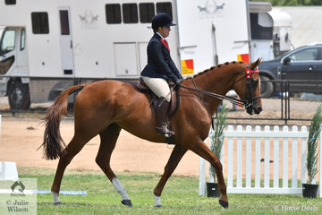 Tanya Morham's, 'Under The Radar' is pictured during the Over 16.2hh section of the Rising Star Hack Championship.