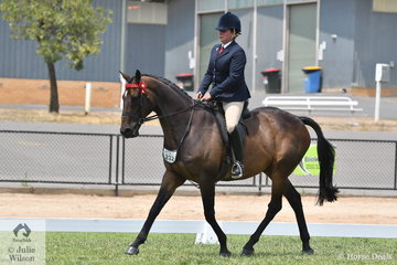 Fiona McIntyre had a great day with her, 'High Roller'. Noted for retraining racehorses to become show horses, Fiona took out the First Season Hack Championship as well as the First Season OTT Championship.