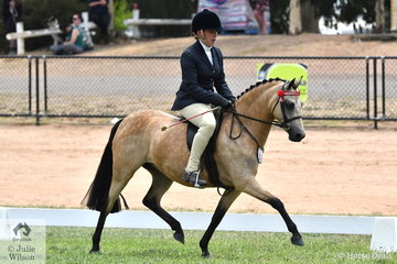 Brittany Jubb and Julia Grave's impressive and good moving, 'Zilarah Park Elusive' was declared Reserve Rising Star Small Pony.