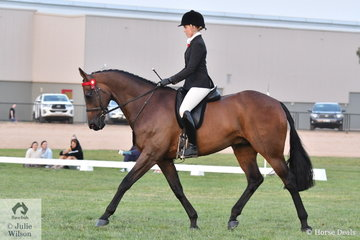 Ava Halloran rode the Halloran Family's, 'I'm Hector', show name, Muse, that was declared Reserve Champion Racing Victoria Off The Track Horse. Muse also made Top Five in the Riding Star Hack Championship.
