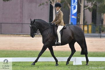 Holly O'Brien rode Stephanie Horton's, 'Kilburns Mary Poppins' to win the 15-16hh class and claim the Child's Show Hunter Hack Reserve Championship.