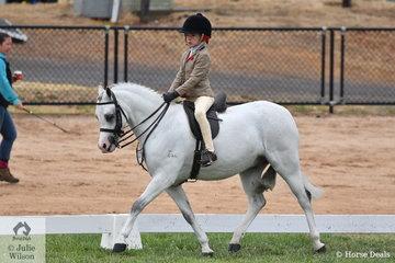 The delightful combination of Ingrid Abrahams and, 'Arcadian Enforcer' made Top Five in the 2020 VAS Ltd Small Show Hunter Pony Championship.