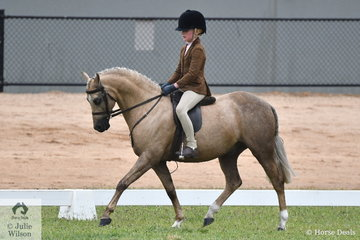 Putting in a sophisticated performance, Grace Bains rode, 'Thorwood Kings Gold' to claim the 2020 VAS Ltd Small Show Hunter Pony Championship.