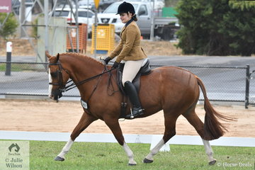 Olivia Webster and, 'Boston Sunrise' made the Top Five in the Show Hunter Galloway Championship.
