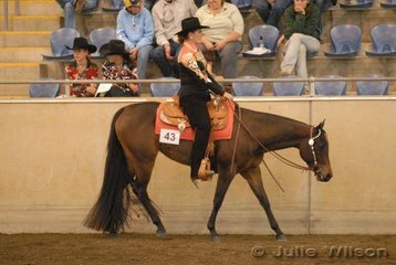 YLS Pawsitively owned and ridden by Yasmine Lee-Steere was a finalist in the $750 Ltd 2 yo Western Pleasure Futurity sponsored by Croppy's P's and Q's.