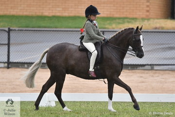 Sienna Mullan-Wright is having great fun and plenty of success with her new ride, the successful, 'Owendale Beesting'. Samantha Mullan's nomination was declared Reserve Champion Child's Show Hunter Pony.