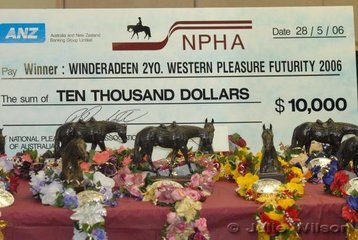 23 horses contested the the go-rounds of the $20,000 2 yr old Western Pleasure Futurity sponsored by Winderadeen Corporation. Ten went through to the Sunday final, where someone will take home the $10,000 winners cheque.
