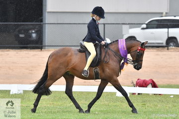 Shayleigh Joblin's Maxwood Matador Royale was declared Reserve Champion Large Pony.