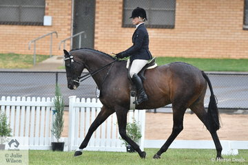 Michelle Paynter rode her DP Amazing to take out the Large Hack Championship.