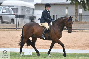 Cassandra Troon's, Zinzan competed in the Alabar Hero Series Standardbred State Final. Each year the standard of this class really improves.