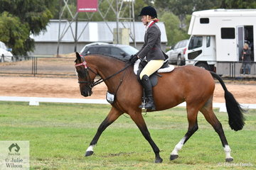 Fiona Sandkuhl's Operative Princess was declared Reserve Champion in the Alabar Hero Series Standardbred State Final.