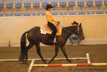 Annlee Wait N Cee owned by M and S Davidson and Annette Boyd and ridden by Annette Boyd in the Amateur Trail.