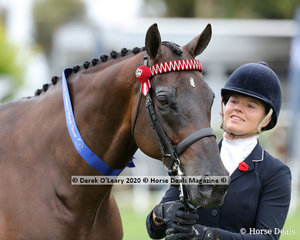 """Winner of the Led Off The Track Hack, Sophie Fox and """"Ascot"""""""