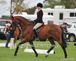 """Ali Berwick rode """"Suits"""" to win the Newcomer Small Hack Class"""