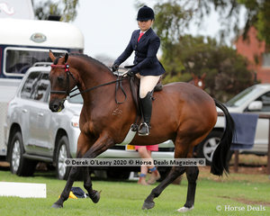 """Brooke Sweeney placed 2nd in the Ridden Newcomer Large Hack riding """"Amber Cavalier"""""""
