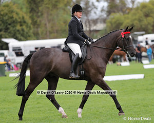 """Rachel Wessel rode """"La Souris"""" to place 3rd in the Ridden Newcomer Large Hack"""