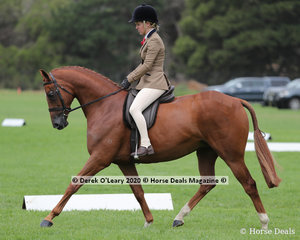 "Tamara Lee rode ""Davron Park Armani Code"" in the ridden Large Hunter Galloway"