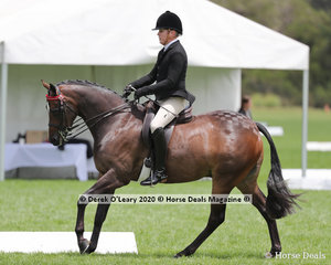 """Kurt Crowther rode """"DP Playboy"""" placing 2nd in the Ridden Small Hack"""