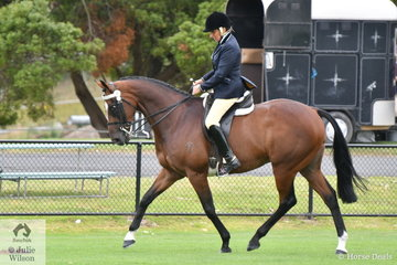 Shelley Penny rode her, 'Prince of Babalyon' (racing name as well as show name) to win the class for Racing Victoria OTT Horse 15-16hh.