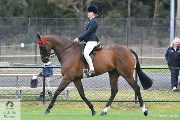 Time flies and the now 14 year old Phoebe Kuros rode her, 'KP Entertainer' to win the class for Open Hack Over 16.2hh and go on to claim the Ring 1 Hack Reserve Championship.