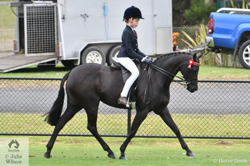Charlotte Clegg rode Alexandra Padey's, 'Wynara Midnight Serenade' to take second place in the Ring 2 class for Open Pony 13-13.2hh.