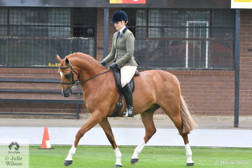 Elizabeth Krog rode the eye catching, 'Warrawee Vouley-Vous' to take out the Ring 1 Show Hunter Hack Championship.