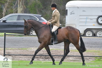 Clint Bilson is pictured aboard, 'JD Kiamichi' that won the class for Ring 1 Show Hunter Over 16hh.