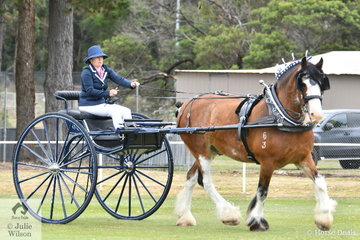 Kate Woodward from Fish Creek drove her, 'Jeneal Lucky' to claim the Delivery Horse Reserve Championship.