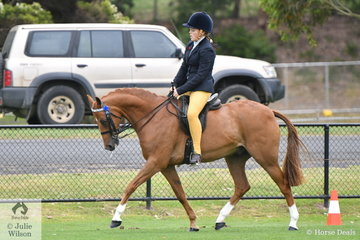 Chelsea Molloy rode her, 'Felix'  to take second place in the Ring 1 class for Open Galloway 14.2-15hh.