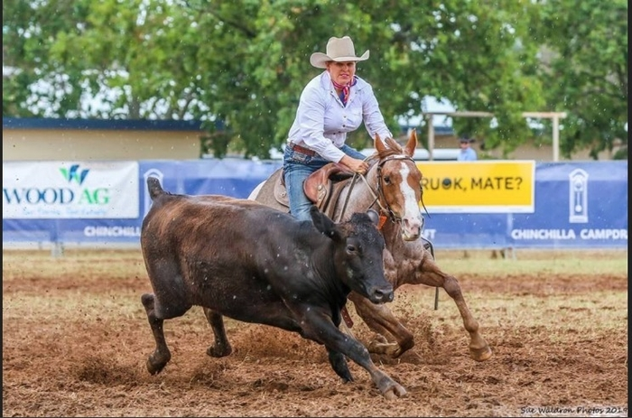 Southern Zone Novice Horse Stylish Mello owned and ridden by Kylie Graham at Chinchilla Campdraft. Picture: Sue Waldron Photos