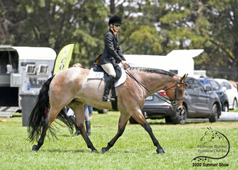 Keren Wright riding Wicked Mind in the Open Hunter Under Saddle class.