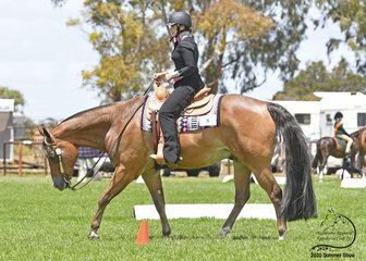 RQH The Wizard ridden by Cassandra Grainger, in the All Age Western Pleasure