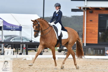Alicia Ryan and Bluefields Furstentanz placed second in the FEI Intermediate A.
