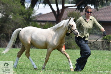 Fran Langley is pictured with her Reserve Champion WMP Gelding, 'Storm View Olaf'
