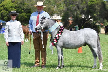 Stuart Robinson is pictured with judge, Sabina Helmgens and Fay and Melissa McCauley and Denise Ahsam's yearling, Champion WMP Gelding and Supreme Led Gelding, 'Rivington Lamington' (Rivington Spring Rain/R. Lyric).