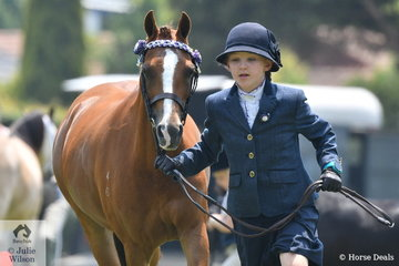 Cassidy Butterworth with a little help from , 'Silkwood Ribbons' won the class for Junior Handler.