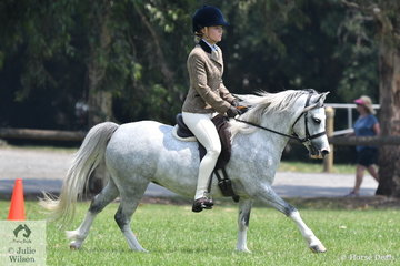 Jess Jackson rode Margaret Sperrin's, 'Mosman Park Druid' to take second place in the Section A division of the  Australian Ridden Welsh and Part Welsh Qualifier