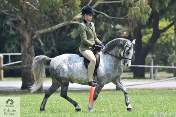 Scarlet Porter rode the home bred, 'Vanoca Part Titan' to win the Ridden Welsh and Part Welsh Section B Qualifier.