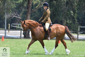 Caroline Purcell rode the Heffernan and Purcell nomination, 'Nawarrah Park Astro Boy' to win the Section C class and go on to claim the Ridden Welsh and Part Welsh Qualifier Reserve Championship.