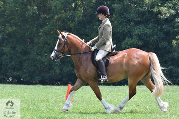 Mariece Paine rode her typey, 'Primrose Park Jack O Lantern' to win the Section D Australian Ridden Welsh and Part Welsh Qualifier.