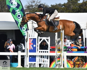 James Harvey rode two very nice rounds aboard Tyrone Vdl, to take third place in the Browns Sawdust World Cup Qualifier.