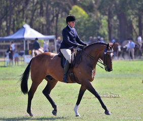 """Francine Treneman rode """"Distanza"""" to win Reserve Champion Large Show Horse."""