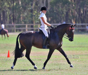 """Lillian Mills had success in the Show Horse ring riding """"Like A Shark""""."""