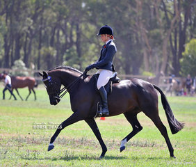 """""""Extreme Chaos"""" and Rebecca Dunn working out to win Champion Large Galloway."""