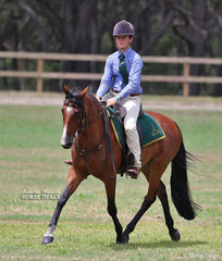 """Winner of  the ASH Novice Working class """"Parnell Downs Trick Or Treat"""" ridden by Gracie Parnell."""