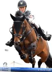 Amanda Leyshan from ACT rode Viva Unique in the Open 130cm Art. 238.2.1.