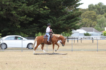 Amy Outram riding a lovey obstacle course in the Novice section.