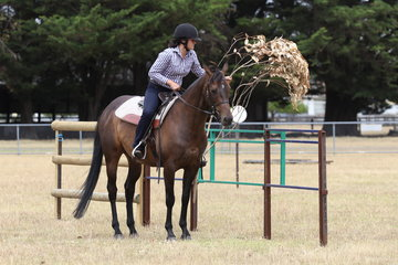 Emma Sagasser and Chester removing the dead tree before going through the gate obstacle.