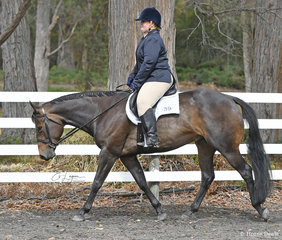 Alison Morgan riding Im Good N Lazy, in the Senior Horse Hunter Under Saddle class